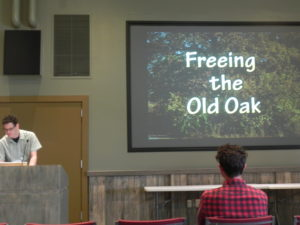 Freeing the Old Oak Video