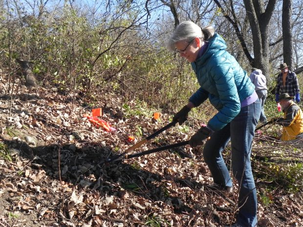 Badger Volunteer Stewardship Day March 10