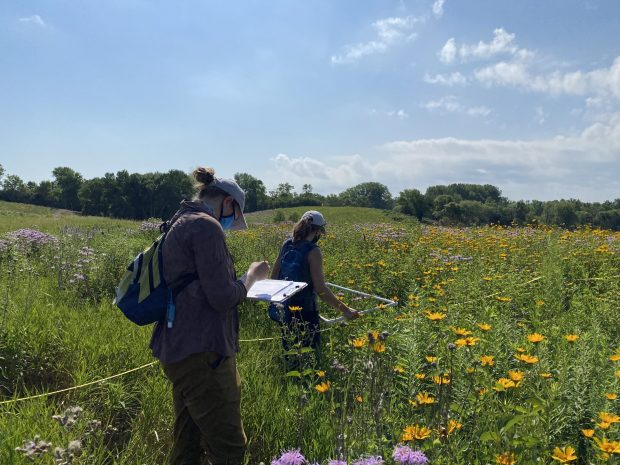 The Sauk Prairie Conservation Alliance is excited to join the Monarch Joint Venture (MJV) partnership!